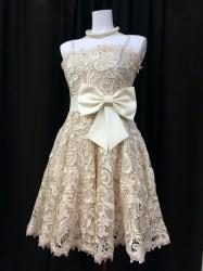 白鳥麗子でございます!で着用レンタルドレス